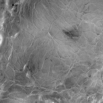Segment of Venus